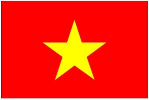 베트남 국기.